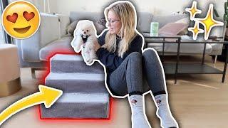 Unser Hund SCOOPS bekommt eine TREPPE! | Sonny Loops
