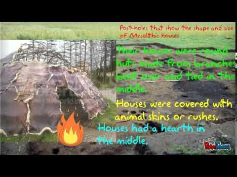 Mesolithic Ireland