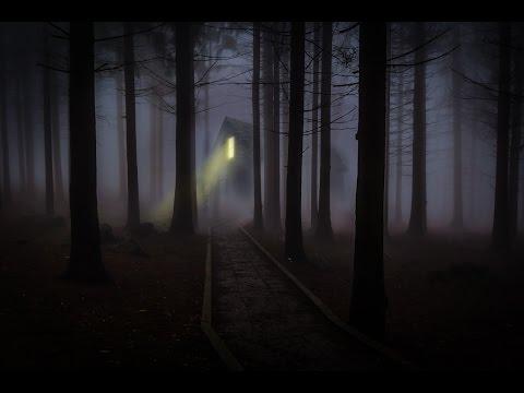 Nachts im Wald - Waldgeräusche bei Nacht mit sanfter Musik  ⚫ Entspannungsmusik ⚫ Entspannungsvideo