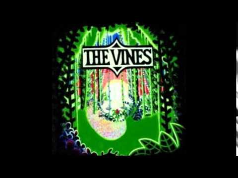 The Vines - Ain't No Room