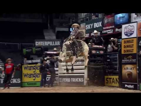 TOP 8 Bull Scores of 2014 (PBR)
