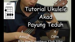 Video Belajar Ukulele (Akad - Payung Teduh) download MP3, 3GP, MP4, WEBM, AVI, FLV Juli 2018