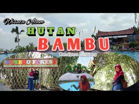Wisata Alam Hutan Bambu Lumajang Youtube