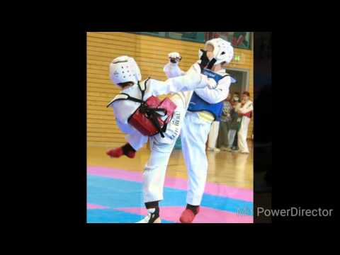 Alexander Navid Sichting 9-year Old Taekwondo Kid