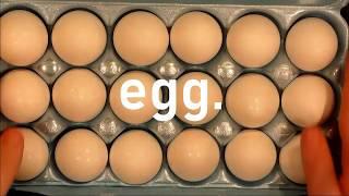 Egg -Dir. Joseph Watts