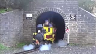 Diamond Valley Railway Teddy Bears Picnic 2016