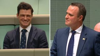 Australian MP proposes to partner during same-sex marriage debate in parliament