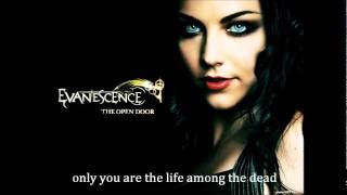 Evanescence ft Linkin Park-Bring me to life lyrics