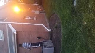 Me doing a backflip make this video go viral my hope and will and goal is to go on TV