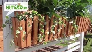 Украшение балкона - подставки для цветов | Hitsad.ru