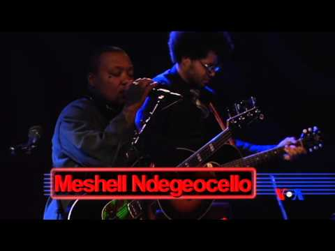 Hamilton Live: Meshell Ndegeocello