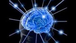 Secrets of the Mind Nova HD
