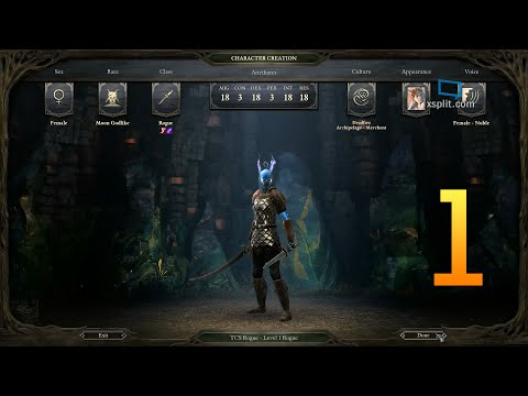 Triple Crown SOLO (TCS) - Rogue (Pillars of Eternity) - Part 1/6