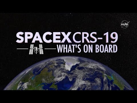 What Launches to Space On SpaceXs 19th Cargo Mission?