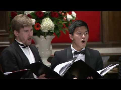 The Best of Classical Music - 50 Greatest Pieces: Mozart, Beethoven, Chopin, Bach...из YouTube · Длительность: 5 ч9 мин57 с