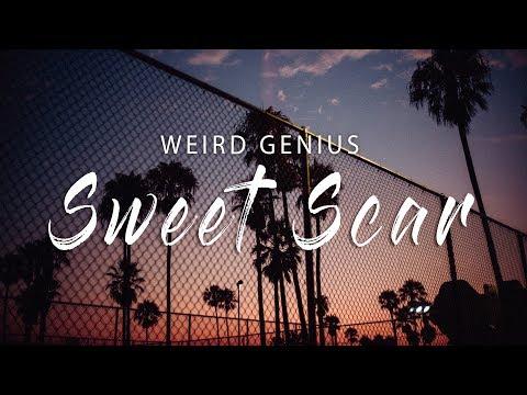 Weird Genius - Sweet Scar (Lyric Video) Ft. Prince Husein [TikTok]
