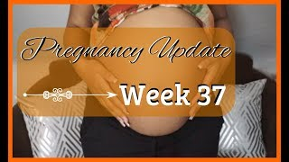 Weekly Pregnancy Update 2018 | Pregnancy Symptoms & Pains | Zen Chini Vlogs