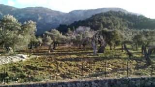 Mallorca 360 degree tour