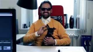 Supergeil Hunde Song (Edeka Parodie)