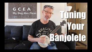 Tuning Your Banjolele | Tom Strahle | Pro Guitar Secrets