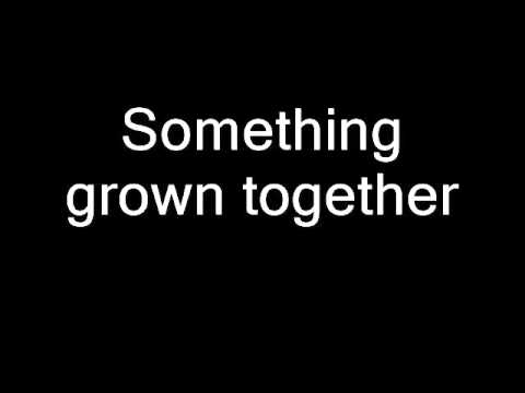 Flobots - Something Grown Together (lyrics)