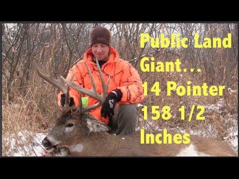 "161"" Wisconsin Public Land Giant Whitetail Buck - YouTube"