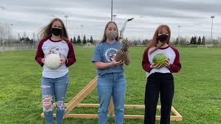 Large Catapult  Gianna Domenici, Lauren Holcomb, &Avery Werner