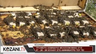 3ήμερο σεμινάριο μελισσοκομίας στην Κοζάνη