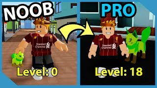 Noob To Pro! Loomian Evolution! Defeat The Battle Theater! - Roblox Loomian Legacy