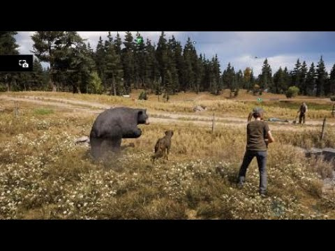 Bags to far cry 5...