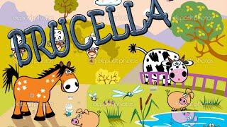 Microbiología: Brucella