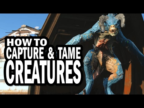 How To Catch And Tame Deathclaws, Raiders, And Other Creatures In Fallout 4 Wasteland Workshop DLC