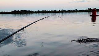 Рыбалка с лодки на реке Свирь Густера клюёт как из пулемета