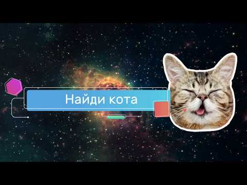Find a Cat For Pc - Download For Windows 7,10 and Mac