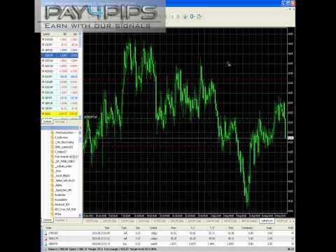 forex strategy 83 pips profit