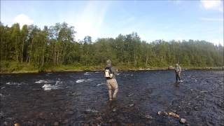 Fishing trip to Kola peninsula 2013, part II