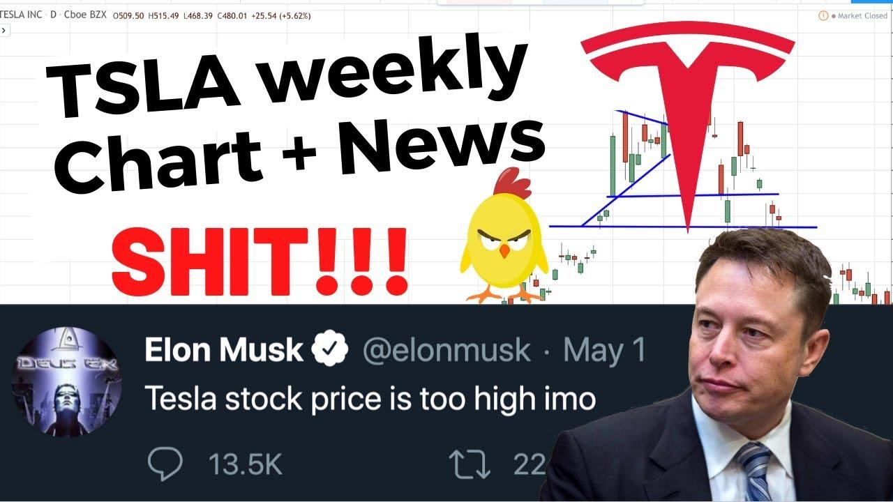 TSLA Weekly Analysis | Tesla Stock | TSLA is too high imo