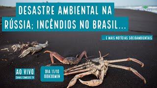 Desastre ambiental na Rússia; Incêndios no Brasil e mais notícias socioambientais - VERDE MAR #78