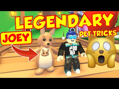 Every Legendary Kangaroo Trick In Adopt Me Joey Reveal Youtube