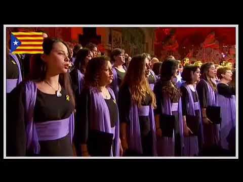 Palau de la Música 2017 Cant de la Senyera