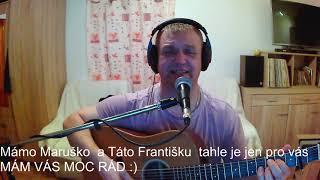 František Nedvěd ml. - Život