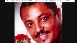 cheikh chaib chrab el widane