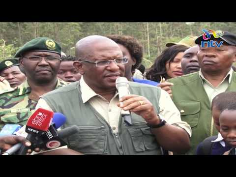Kenya Forest Service officers interdicted amid illegal logging investigations