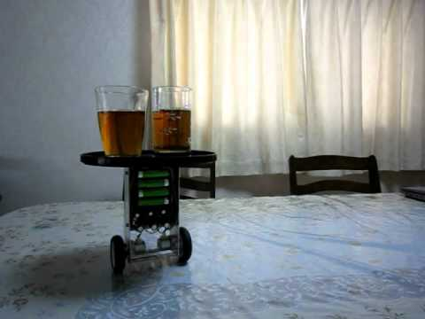Two wheel inverted balancing robot