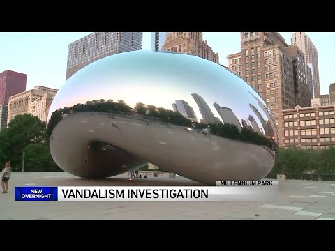 Brooke Taylor - Arrests Made After 'The Bean' and More Vandalized