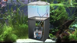 Sera externé filtre fil bioactive + UV pre každé akvárium thumbnail