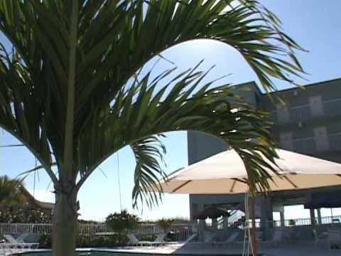 Barefoot Beach Resort & Hotel