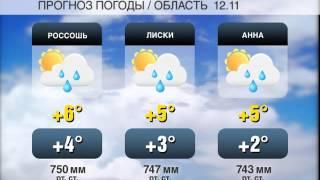 погода на 12 11