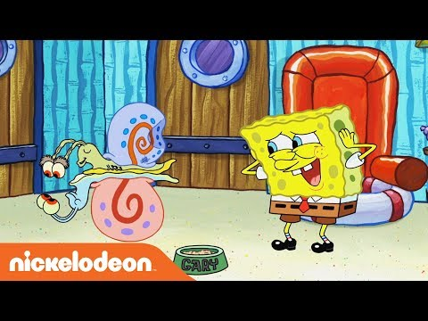 What's the Nickelodeon Channel About? Ft. SpongeBob, Jace Norman & More! 💚
