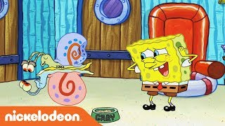 Video What's the Nickelodeon Channel About? Ft. SpongeBob, Jace Norman & More! 💚 download MP3, 3GP, MP4, WEBM, AVI, FLV Agustus 2018